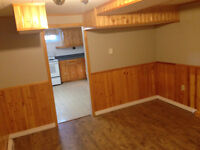 1 bedroom basement apartment $675 all included
