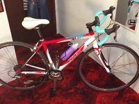 2009 ladies Trek Roadbike 2.1 WSD