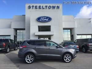 "2014 Ford Escape ""TITANIUM AWD LEATHER/MOON""   - $182.40 B/W"