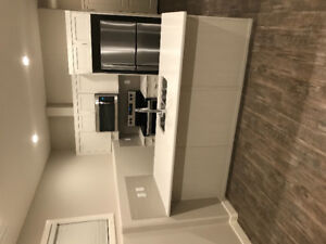 Brand New, very Nice Basement Suite for Rent