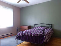 Furnished Room for Rent - Rosemont