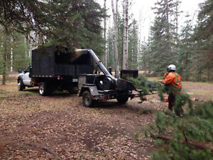 Tree removal and pruning Prince George British Columbia image 3