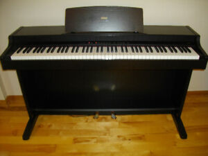 Korg piano & electronic keyboard