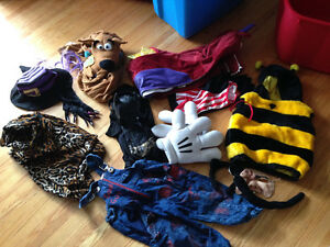 Bag of costumes