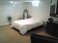 Studio suite , private entrance, great location, no lease