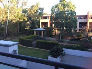 Westmead, 2 Bedroom Apartment Walk to Train Station Westmead Parramatta Area Preview