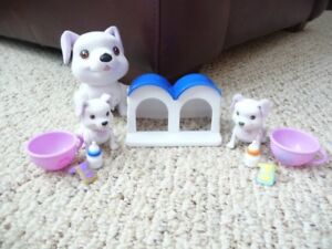 Teacup Puppies (MOM dog and 1 pup talks!)