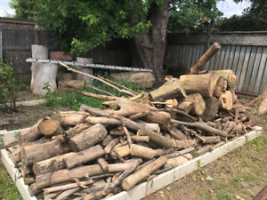 Free fire wood - South Mississauga - pick up only