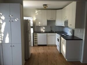 4 1/2 (2br-2lr) Lionel Groulx, St Henri, Atwater