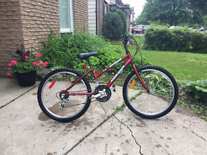 """Supercycle 1800 Sport - 24"""" tires - 18 Speed"""