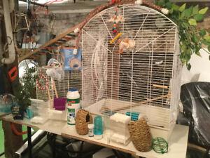 Très grande cage et une petite et nombreux acessoires propre
