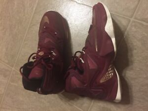 Lebron Basketball Shoes Size 7