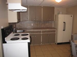 Partially Furnished 2 Bedroom Basement Suite - close to college!