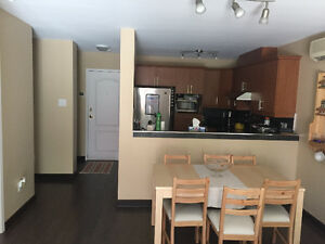 3 1/2 For Rent with HUGE balcony!! West Island Greater Montréal image 3