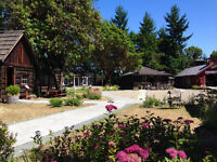 Host an event in the Courtyard, at the Parksville Museum