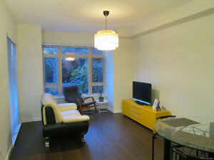 Burnaby Metrotown 1 Bedroom Apartment (610 sq ft) $1500/month
