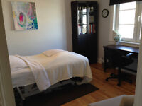 Part-time office space in the Glebe for health care professional
