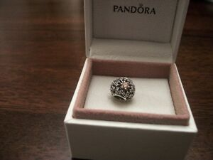 New & Authentic Pandora Charms