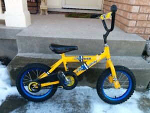Young Child's Bike