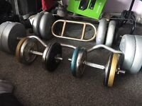 Dumbbells and arm curls for sale