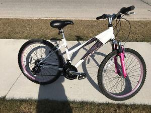 """Girls 24"""" Schwinn 21 speed bike"""