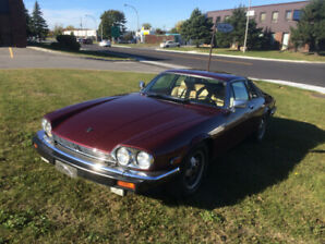 Classic 1983 Jaguar XJS Coupe - Impeccable condition