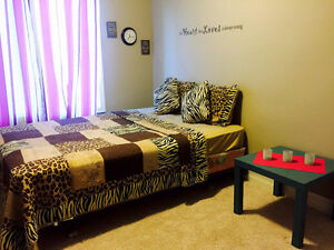 Furnished room in castledowns
