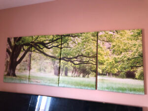 Wall Canvas Tree Picture