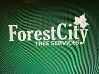 Forest City Tree Services - Winter Sale 20% off