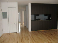 LOVELY Downtown Montreal 2 bedroom condo very well located !!!
