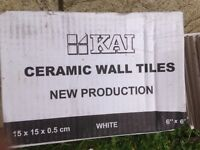 Ceramic wall tiles white