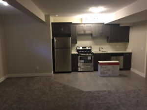$1400 / 2br - 1100ft2 - $1400/month for the Cozy Basement Suite