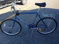 Vintage Bianchi mountain bike *Price reduced*
