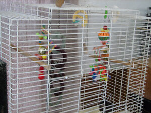 Hagen Flight Cage for medium sized Parrots