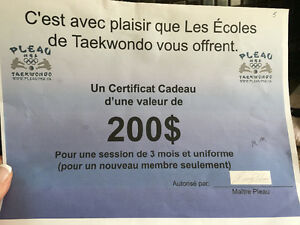 1 session de 3 mois (incluant l'uniforme) de Taekwondo