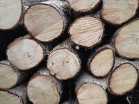 Dry mixed hardwood logs £50