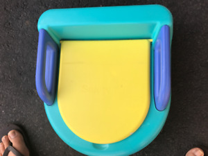 Training (toilet) seat