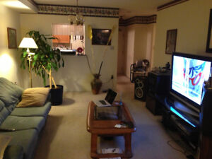 Lakeview 1 Bedroom Burlington Condo - Close to mall and hospital