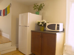 Beautiful Studio Apt downtown (all incl..even Internet and TV)