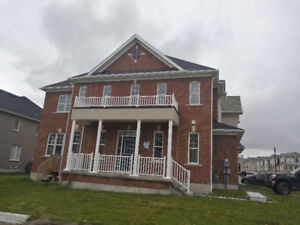 Brand new Detach house for rent in Pickering