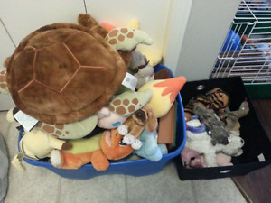 HUGE lot of toys. LPS, MLP, POKEMON, AND MORE.
