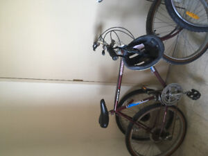 I have an adult road bike for sale I want 60.00dollars for it i