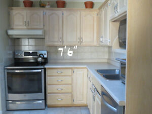 Get A Great Deal On A Cabinet Or Counter In Sudbury Home
