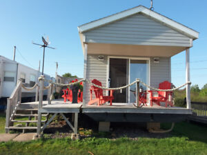 12x40 Tiny House For Sale