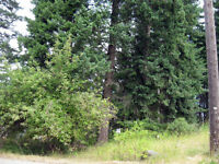 0.24 acre Lot with Mountain View