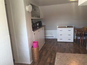 Appartement 1 chambre entier à sous-louer! Centre-ville de Hull! Gatineau Ottawa / Gatineau Area image 6