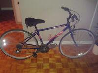 Vélo Trek 700mm