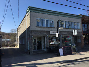 IMMEUBLE COMMERCIAL/ COMMERCIAL BUILDING/ MONT-TREMBLANT