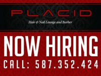 Full-Time Barber/Hairstylist Wanted