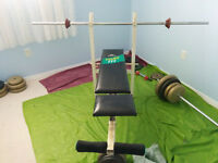 Home Gym (Bench rack, barbells, dumbbells, many plates/ weights)
